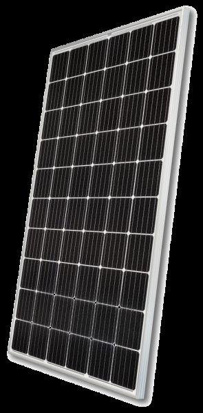 NeMo® 2.0 60 M 300 AR (A) PV4S
